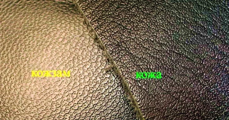 натуральная кожа или кожзам