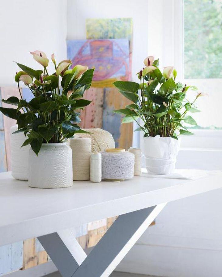 Подставка под цветы: Небольшой столик