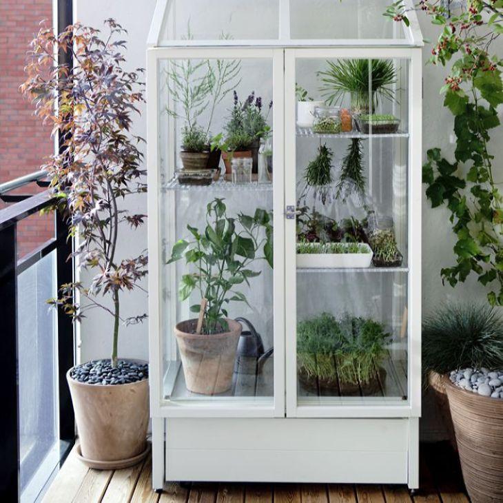 подставка под цветы: Застекленная витрина